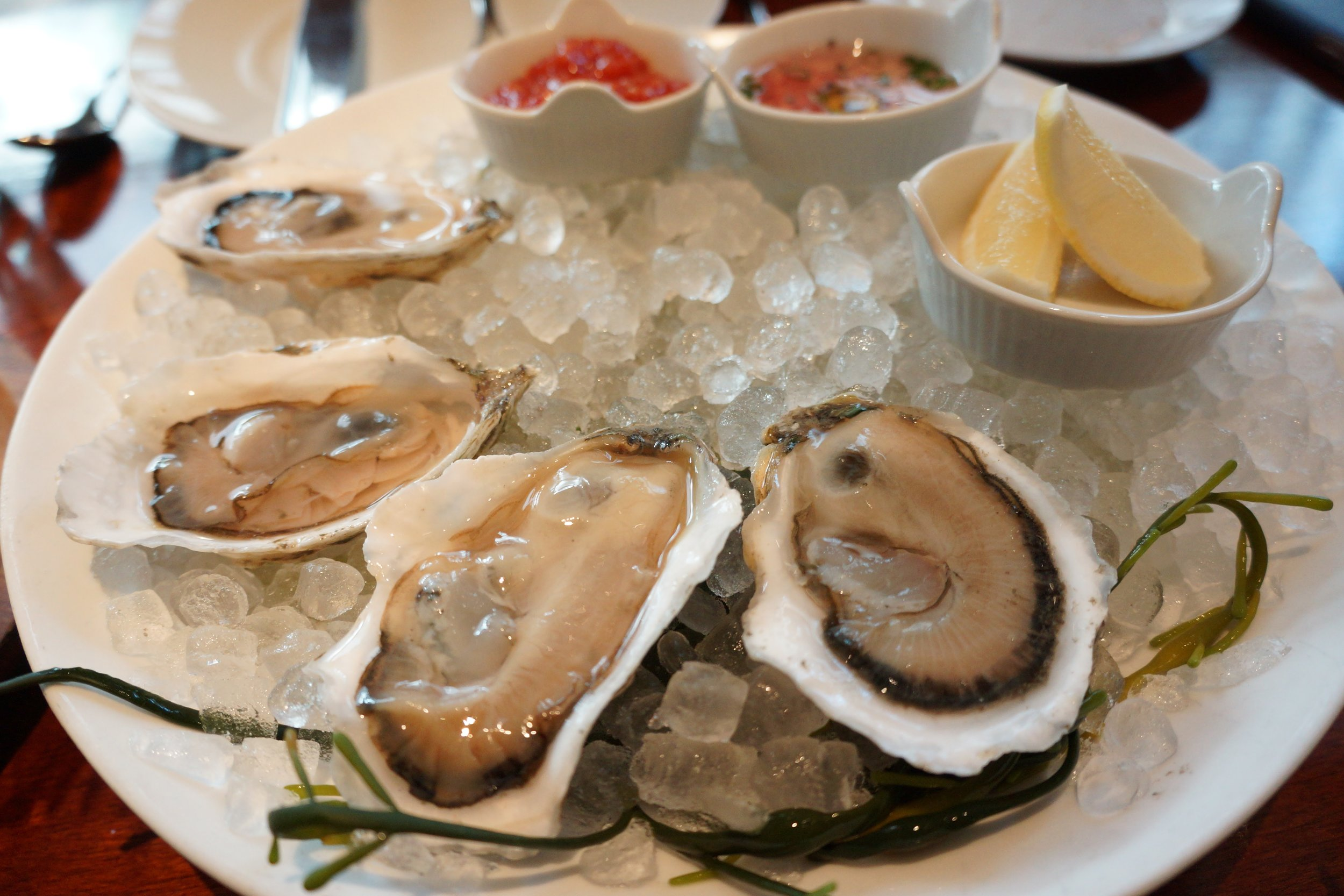 East Coast oysters & me are meant to be.