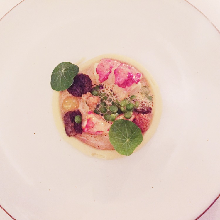 lobster, butter poached with morels and peas