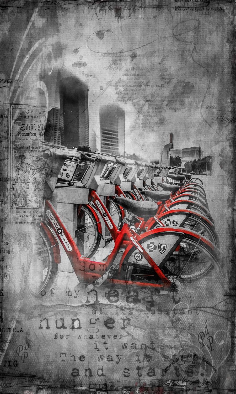 bikes-all-in-a-row.jpg