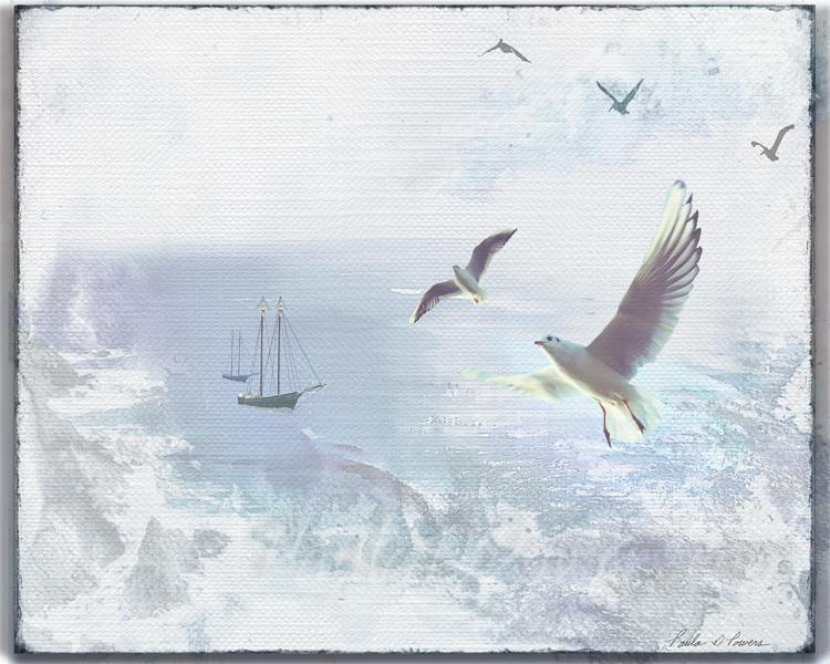 2 600 Sea Gulls c.jpg