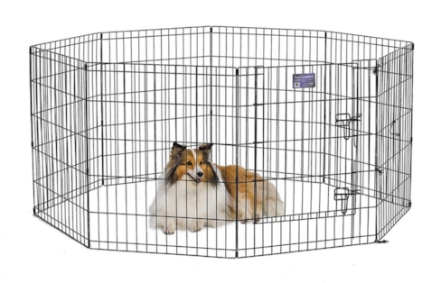 MidWest Exercise Pen with Step-Thru Door; available on Chewy.com