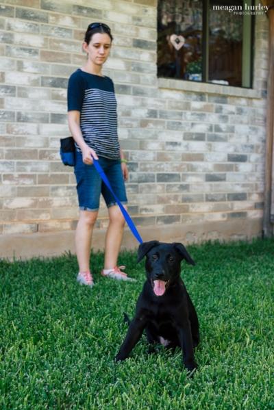 Black puppy on leash.jpg
