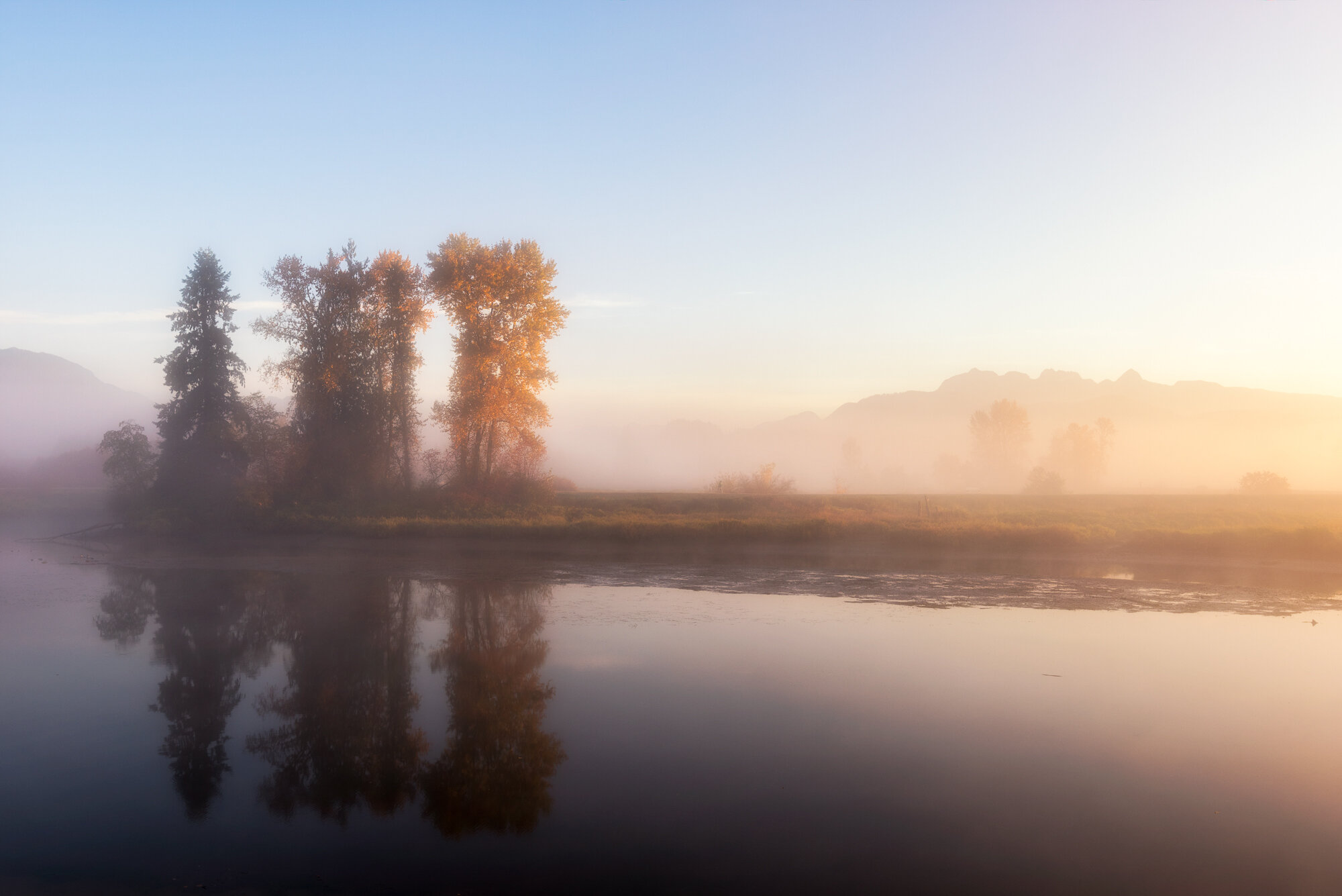 'Misty Morning'