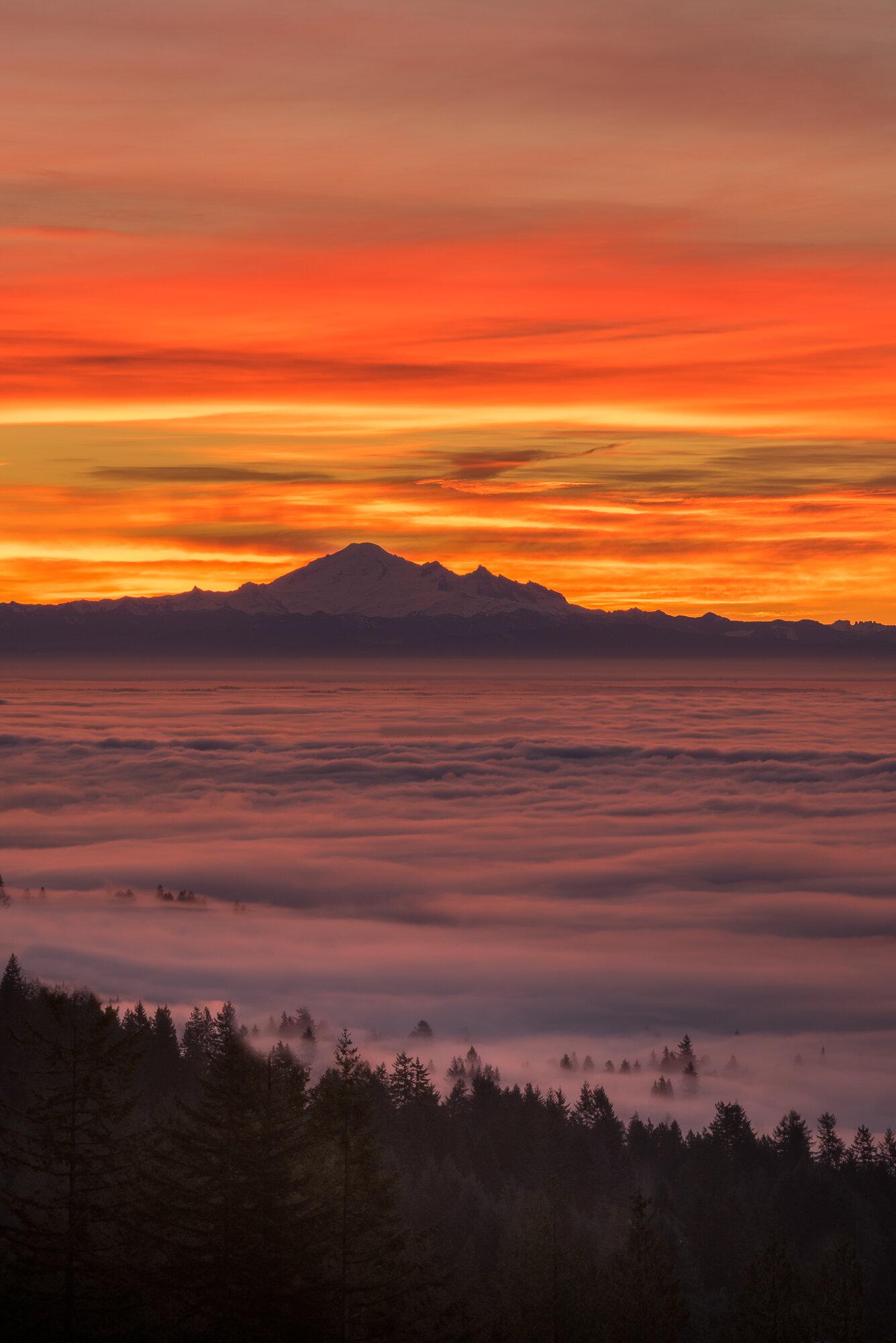 Vancouver Fog Photography: 'Mount Baker'