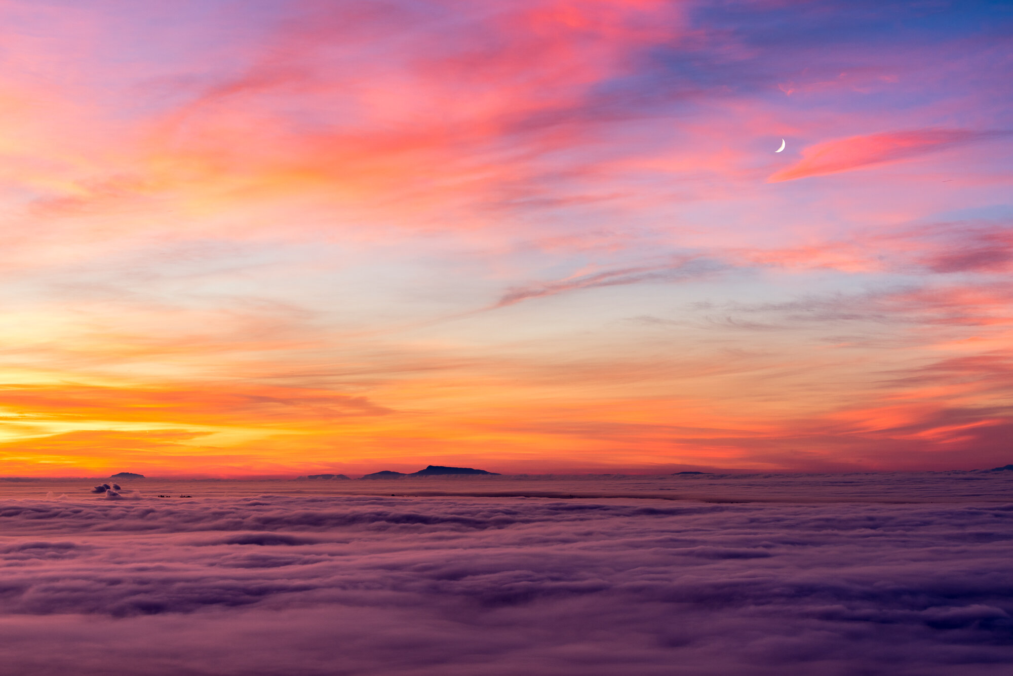 Vancouver Fog Photography: 'Cotton Candy Dream'