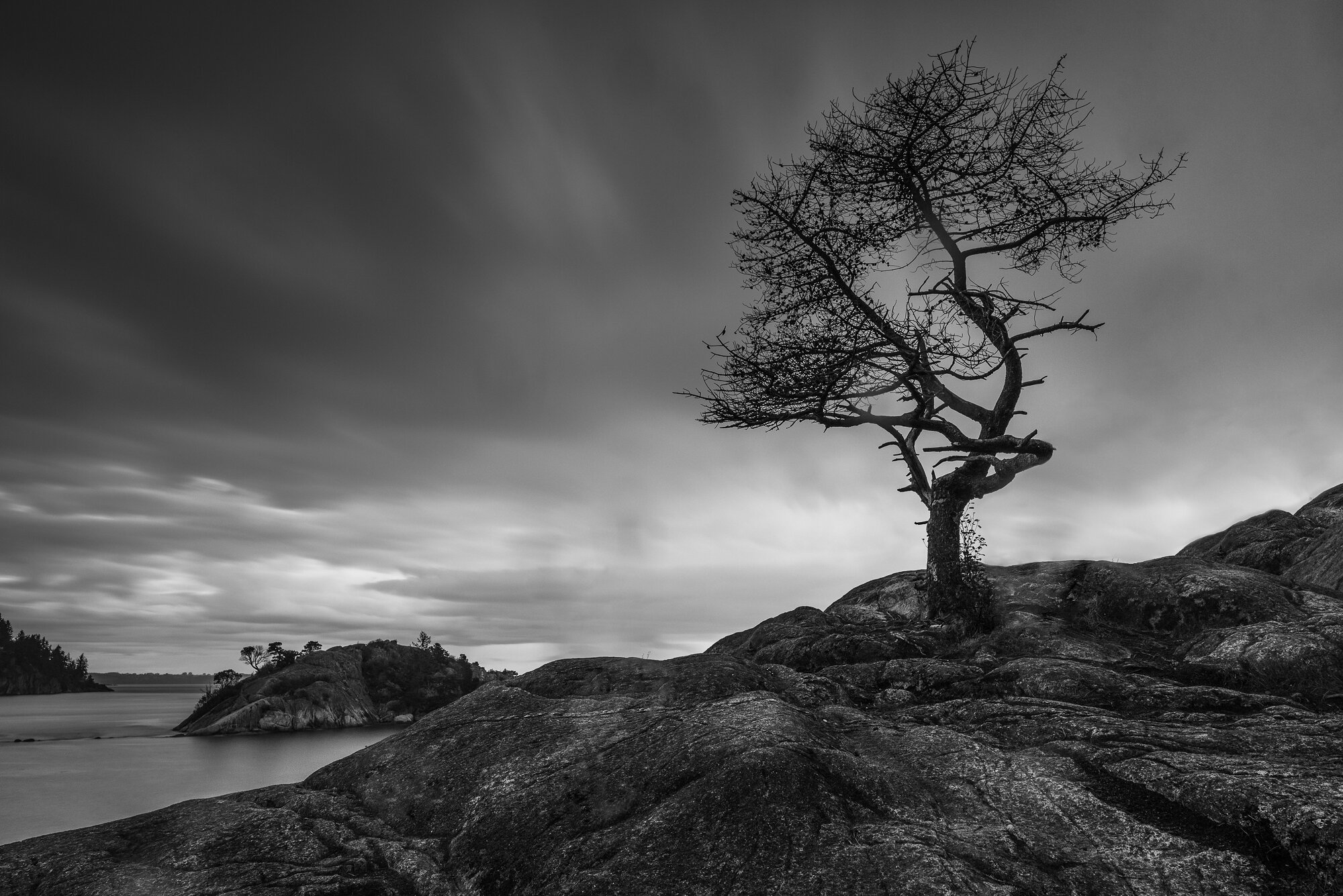 Fine Art Photography: 'The Lone Tree'