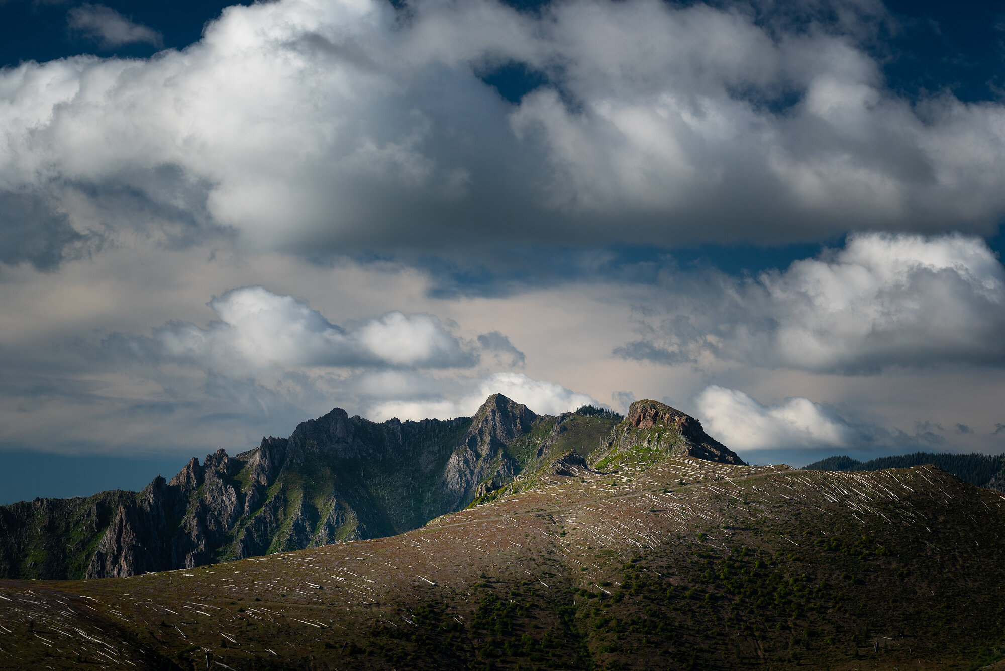 Mount St. Helens Photography: 'The Remnants'