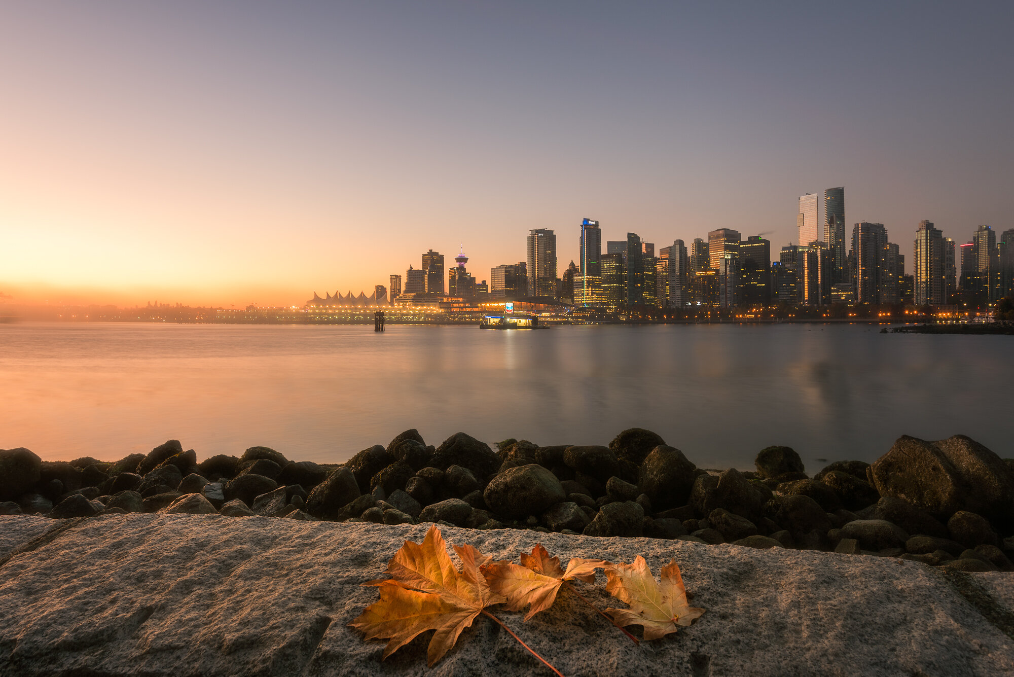 Vancouver City Photography: 'Fall in the City'