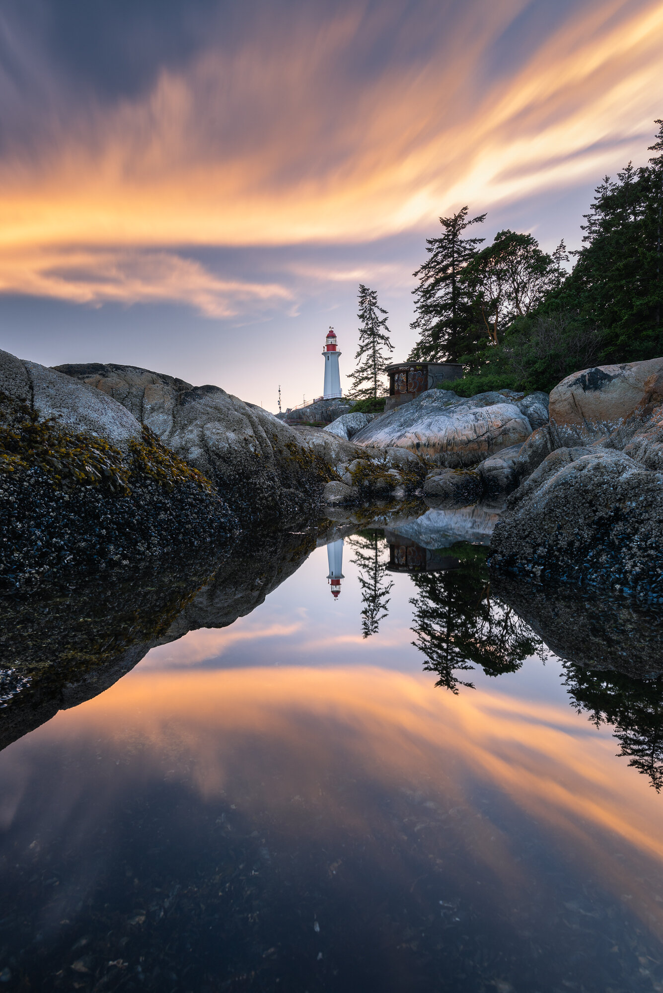 Vancouver Photography: 'Lighthouse Park Tide-pool'