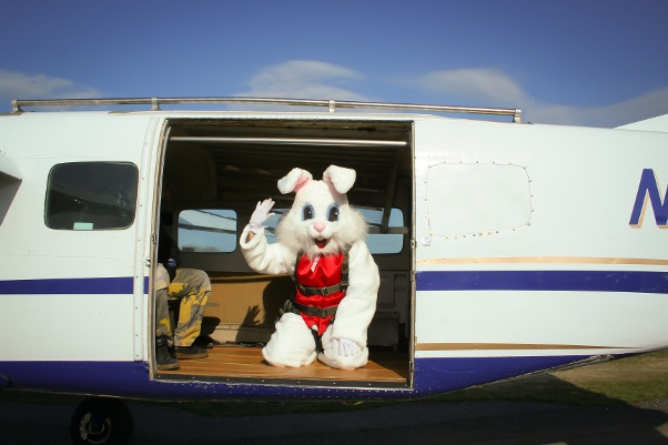 bunny-skydiving-2.jpg