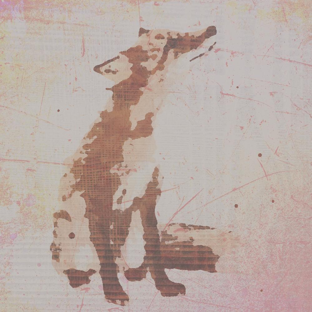 fox square.jpg