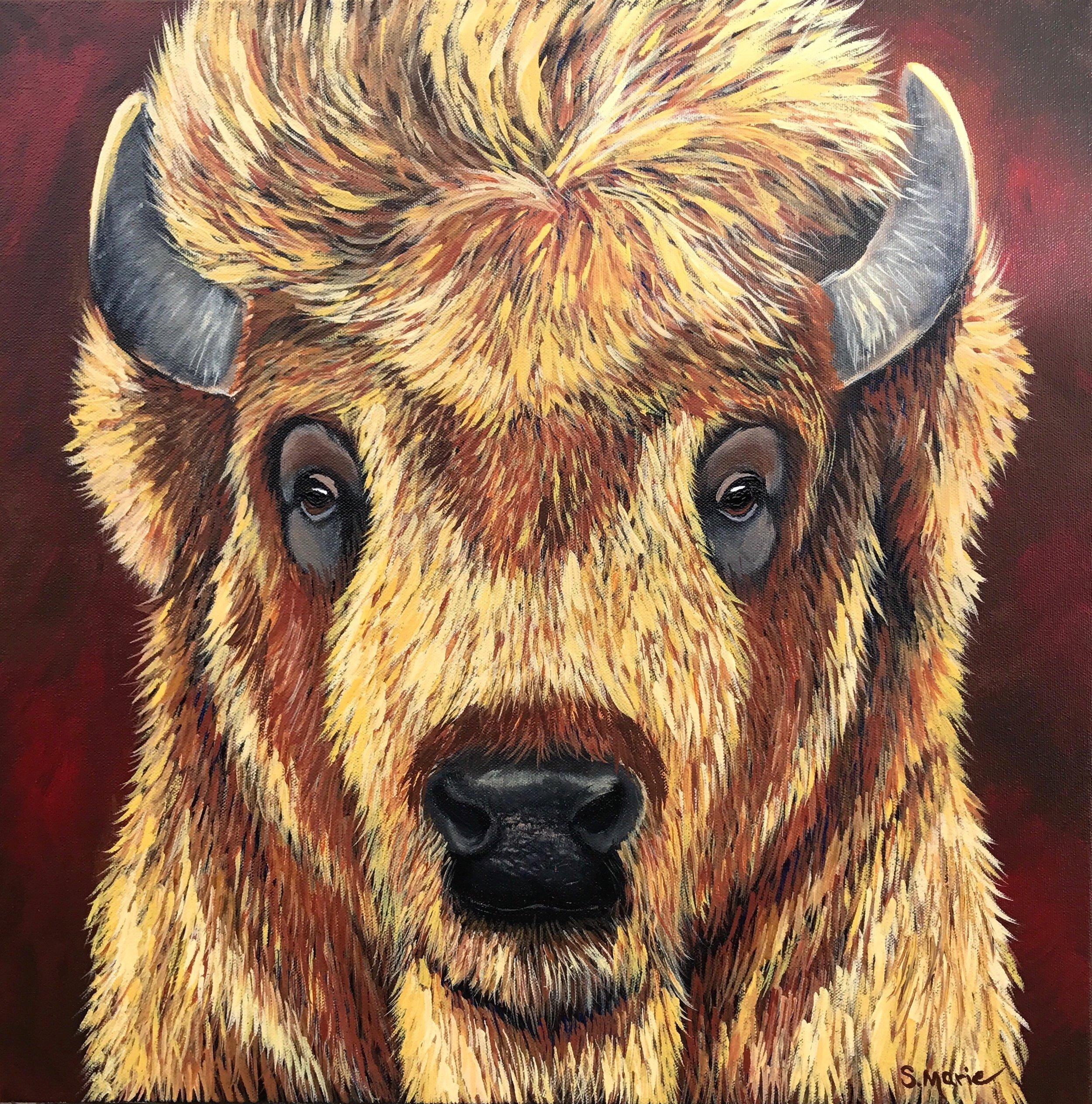 Shannon Schacht - Wyoming Spirit