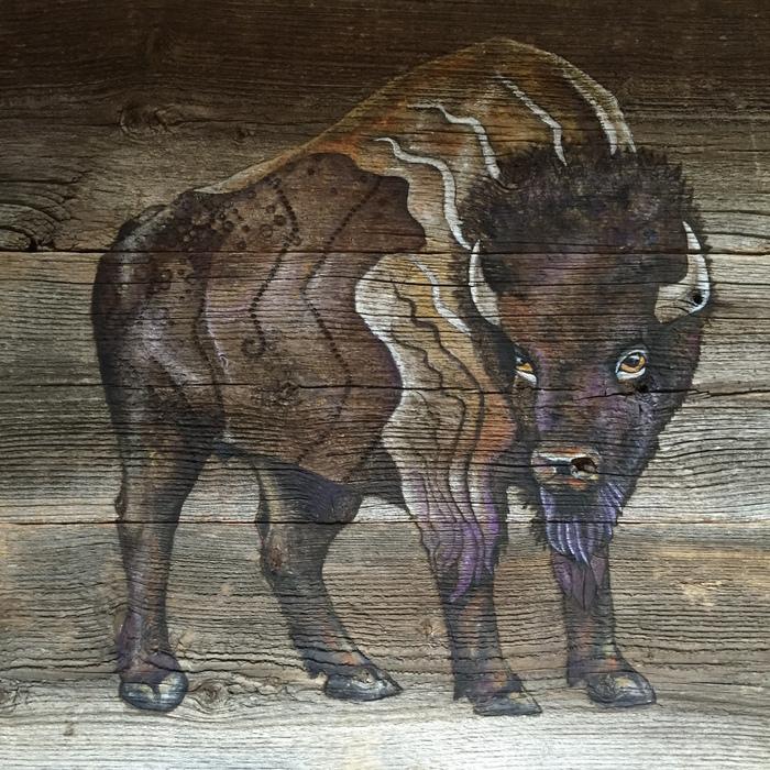 Annelies Leland - Bison