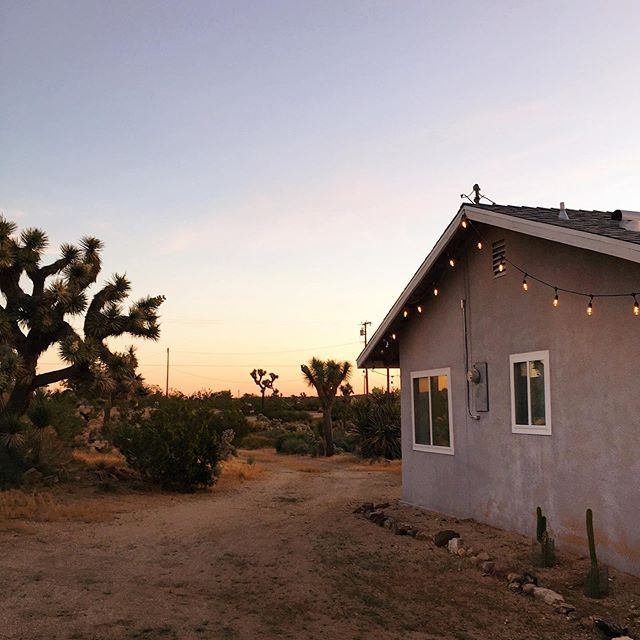 View from the side of the house looking north. Funny to think we had 55 people partying on this little patch of dirt (plus a taco cart) not even two months ago. You can follow @cabinonthemesa for more house and hi-dez goodness.🌵