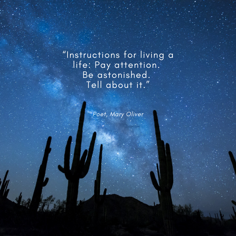 """Instructions for living a life_ Pay attention. Be astonished. Tell about it."".png"
