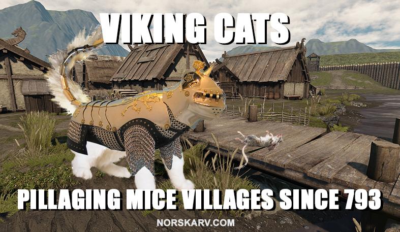 viking cats meme pillage pillaging mice village norskarv norwegian alt for norge