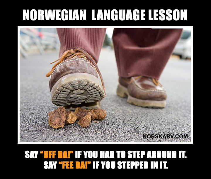 norwegian language lesson meme norway uff da fee da norskarv alt for norge norwegian