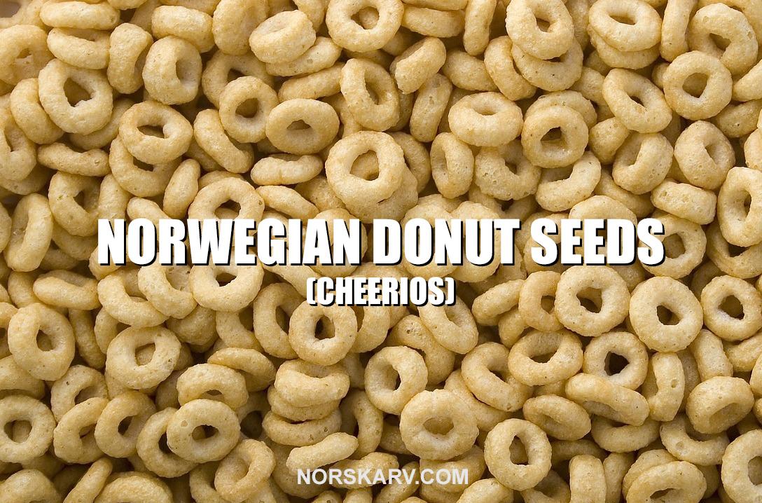 norwegian donut doughnut seeds meme alt for norge norskarv norway meme