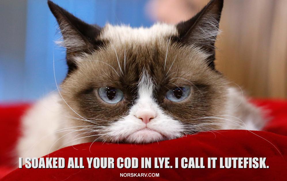 grumpy cat meme lutefisk norskarv norway norwegian cod lye
