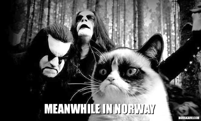 meanwhile in norway meme norwegian black metal norskarv alt for norge grumpy cat