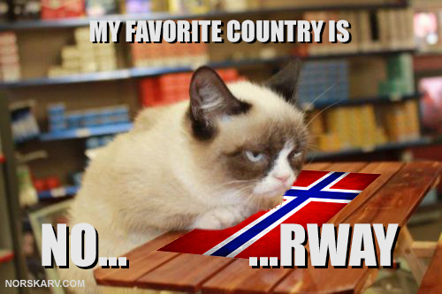 grumpy cat meme my favorite country is norway funny humor humorous norwegian norskarv alt for norge
