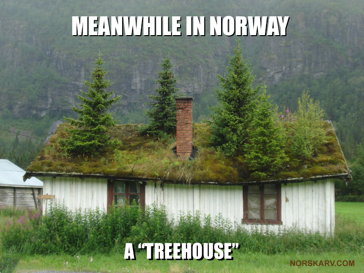 meanwhile in norway meme norwegian norskarv treehouse alt for norge funny humor humorous