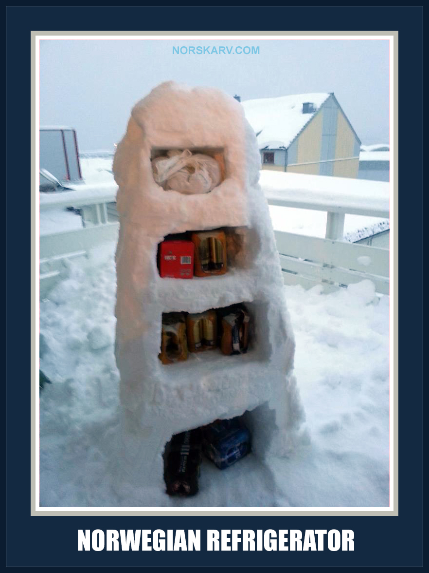 norwegian refrigerator meme cold ice snow norway winter fun funny humor wild crazy alt for norge norskarv