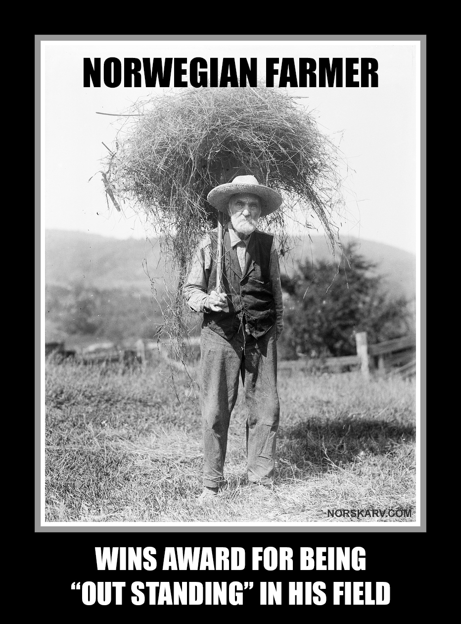 norwegian farmer meme wins award for being out standing in his field norway norskarv alt for norge fun funny humor wild crazy