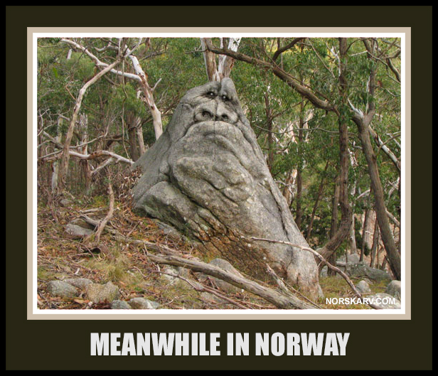 meanwhile in norway meme norwegian norskarv alt for norge stone troll forest fun funny humor humorous