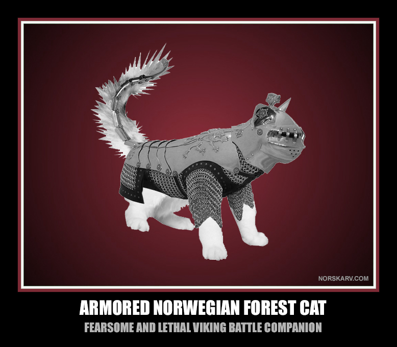 Armored norwegian forest cat fearsome and lethal viking battle companion norway alt for norge norskarv fun funny humor humorous