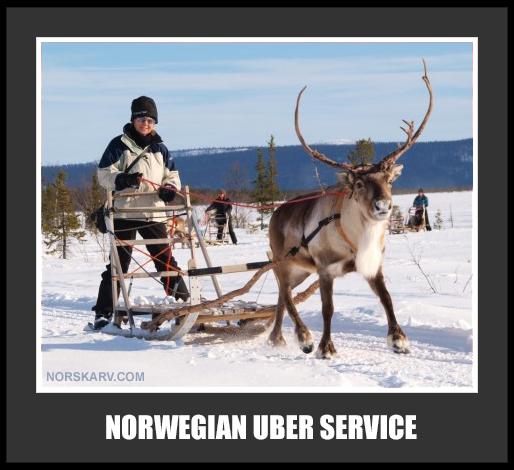 Norwegian Uber Service alt for norge reindeer sled sami fun funny humor humorous