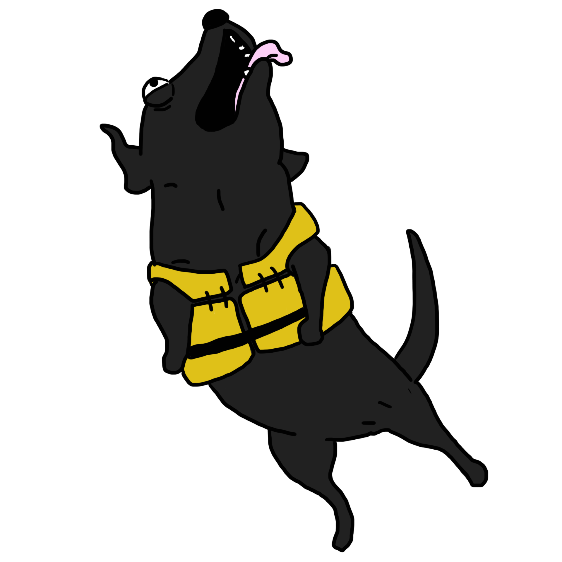 3.-Tucker-whale-poop-dog.png