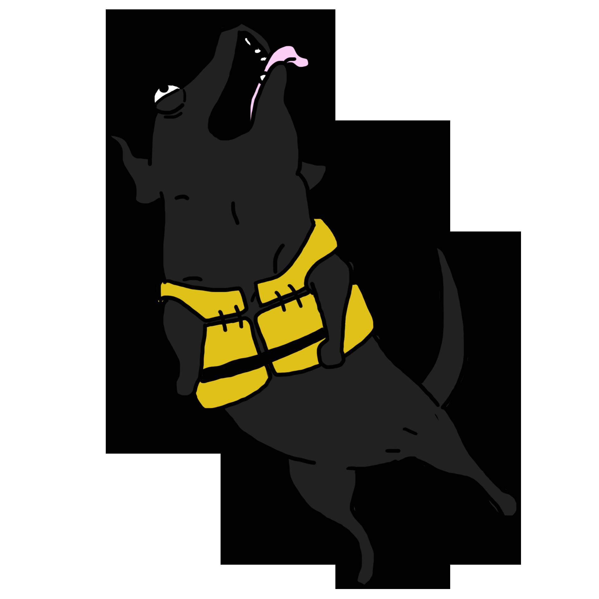 3.-Tucker-whale-poop-dog.png