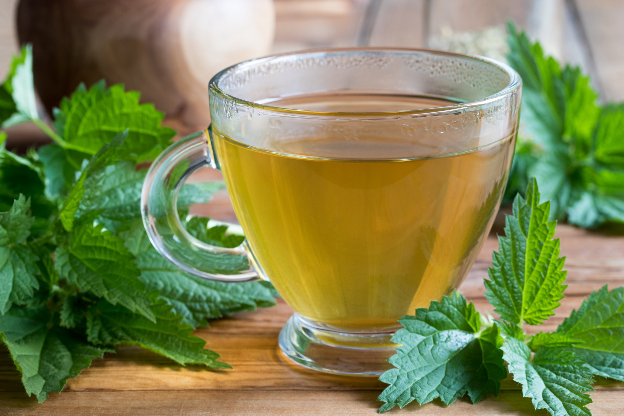 Nettle Leaf Tea.jpg