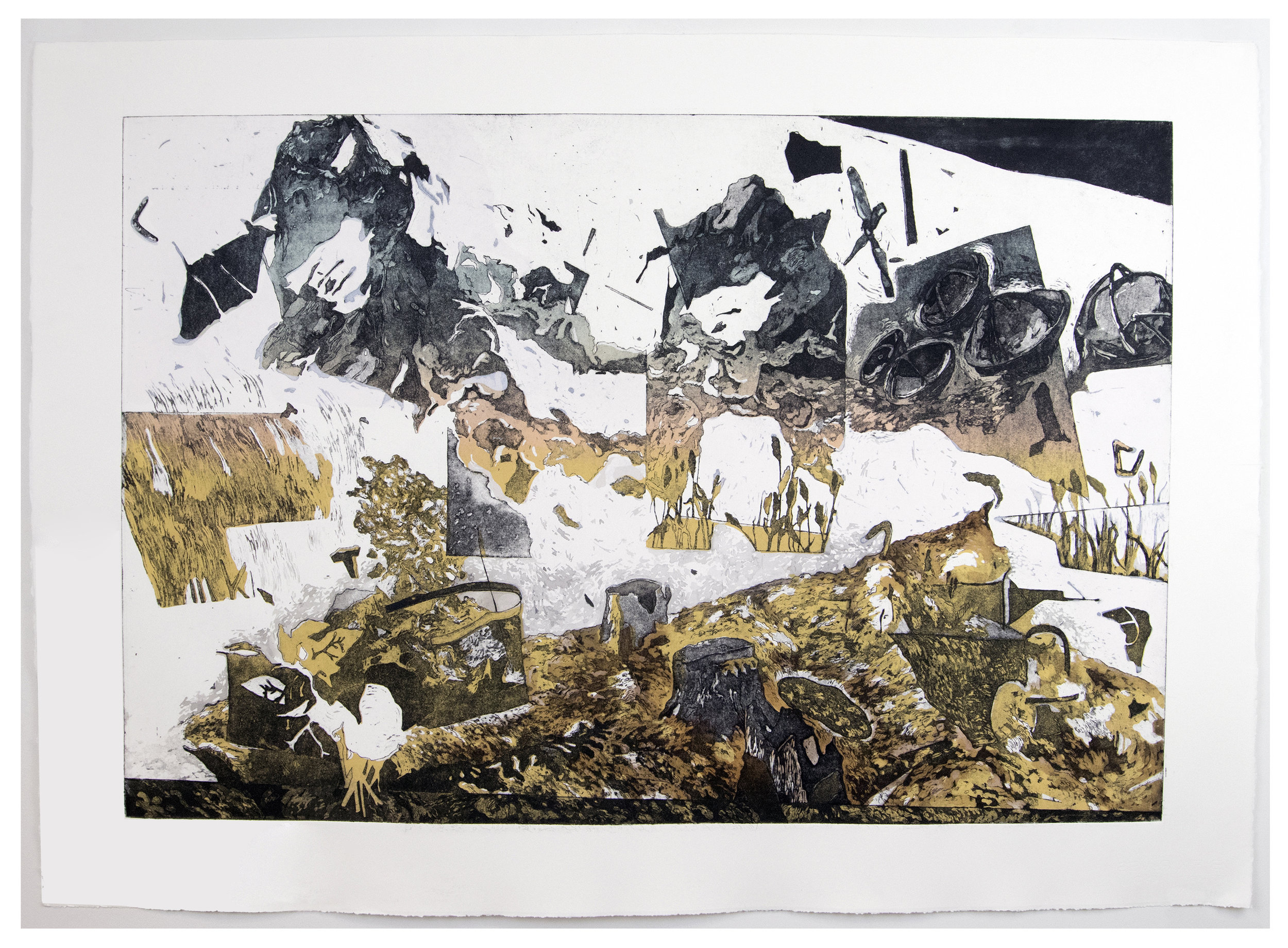 Fracture ; Intaglio and Screen-print, 29''x41'', 2017
