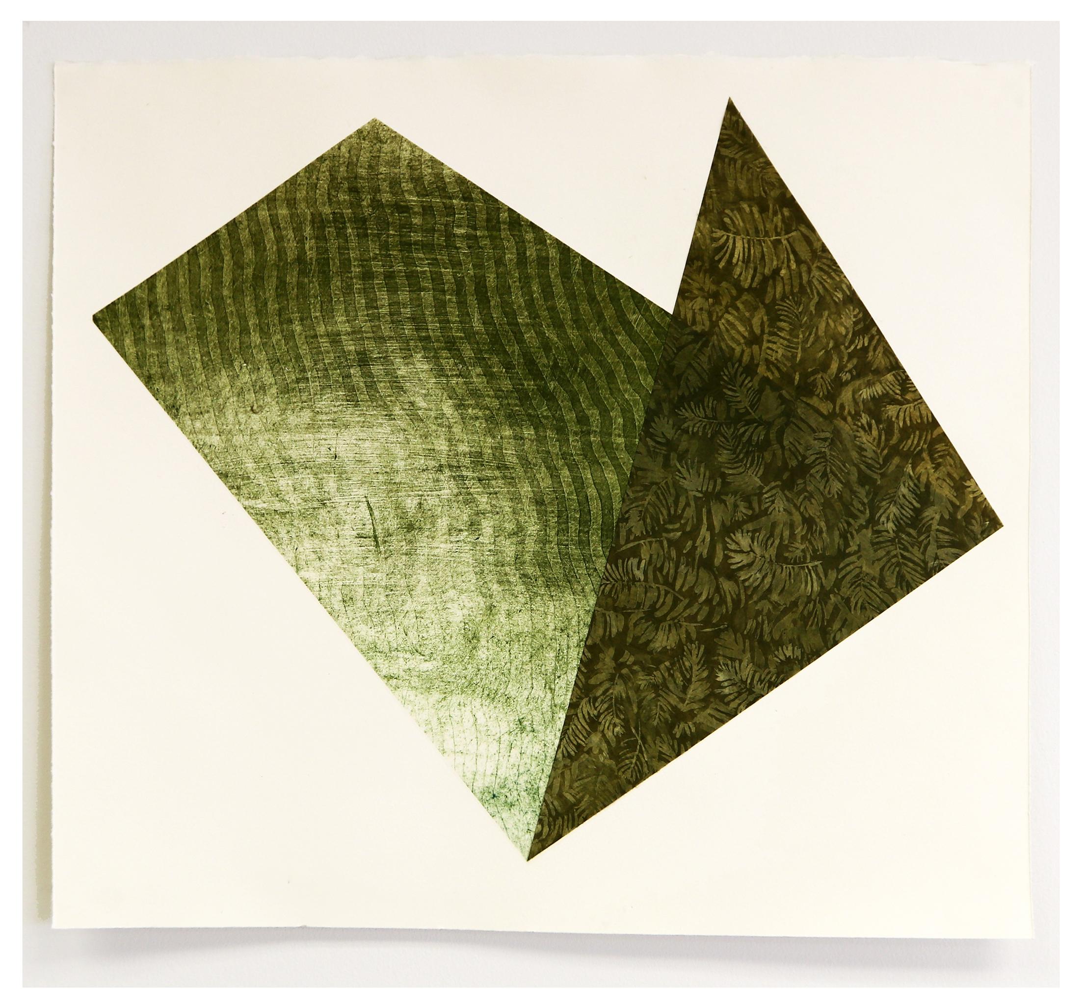 Hedge ; Intaglio and Chine Collé, 22''x25'', 2018