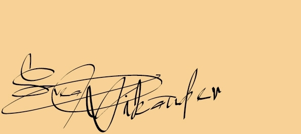 Svea Vikander signature.jpg