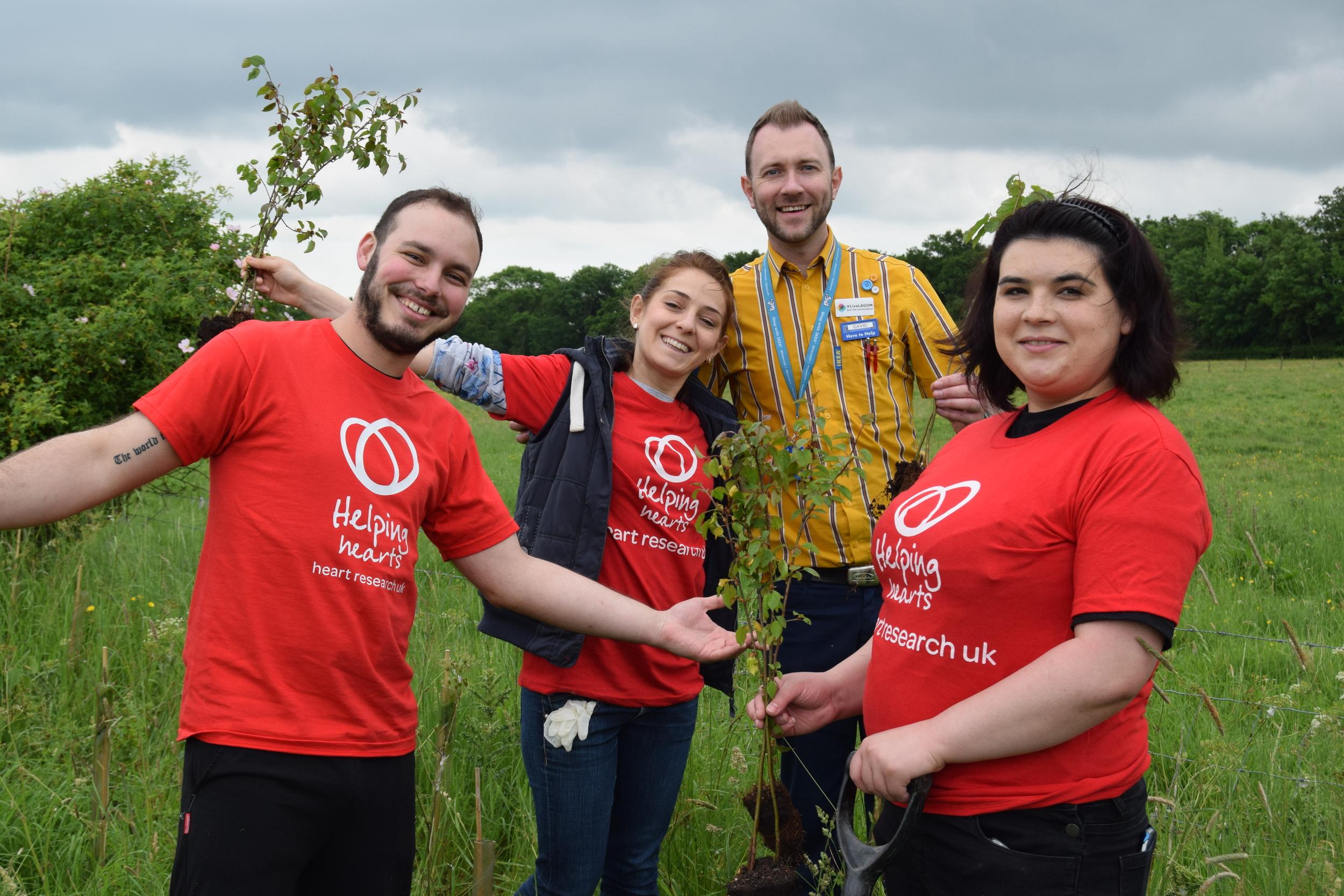 Employee_volunteering_Ikea_Forest _of Hearts.JPG