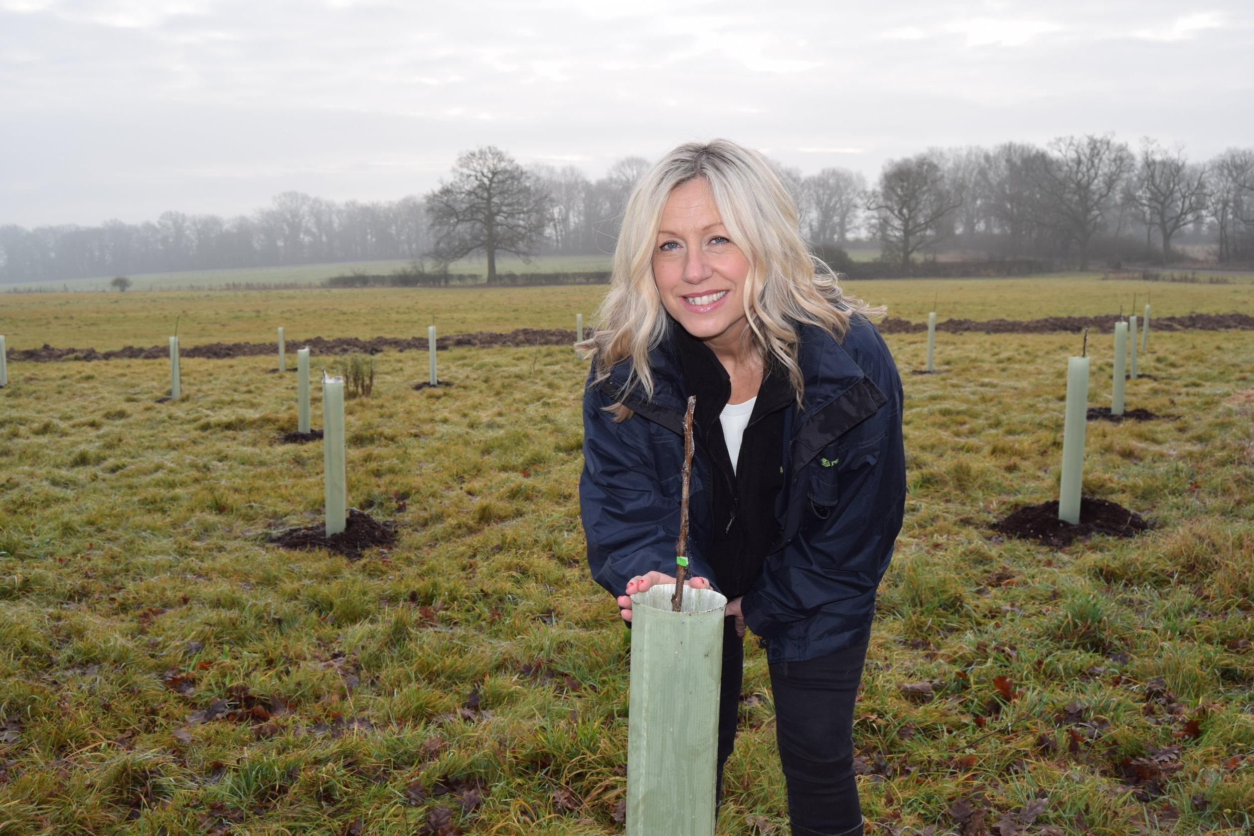 Tree planting in Stratford upon Avon