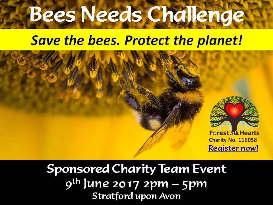 Bees Needs Challenge