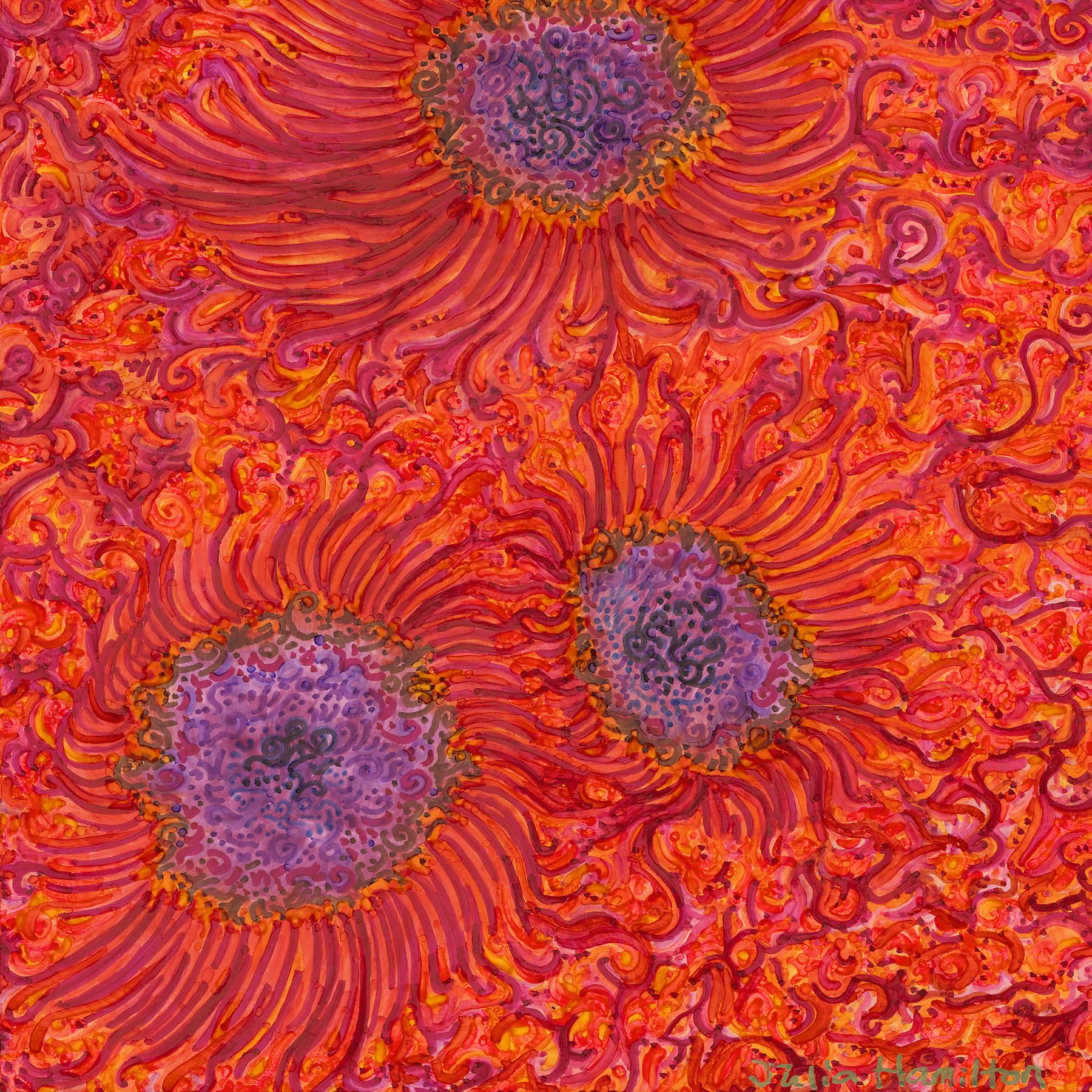 Sun Spots II.jpg