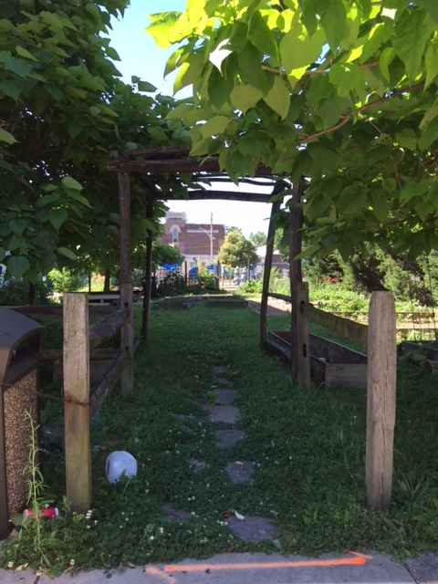 Community Gardens and Urban orchard