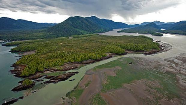 Lelu Island. Source: CBC News
