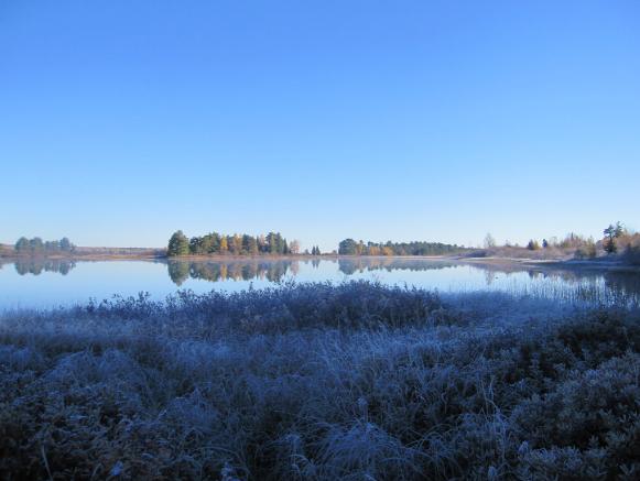 Lake Superior Wetland in the Abbaye Peninsula Michigan