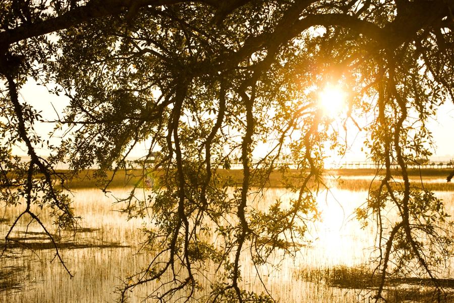 VermontPhotographer_2472.jpg
