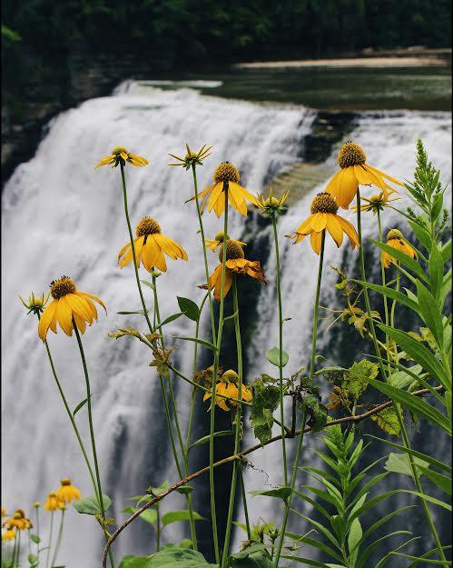 letchworth state park waterfalls.jpg
