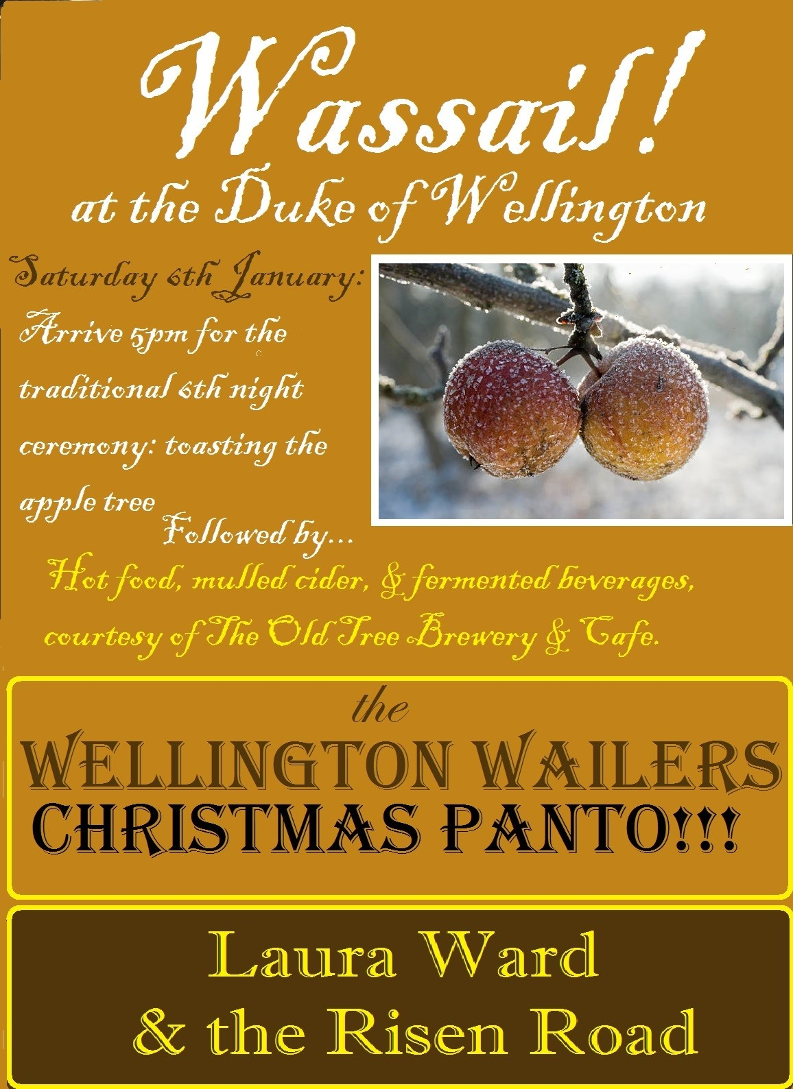 Welly Panto Poster 17.jpg
