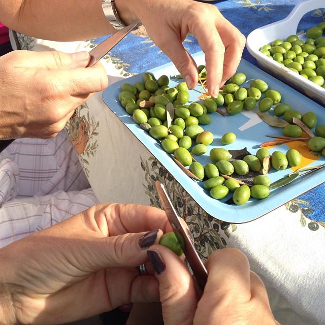 snittar oliver.jpg