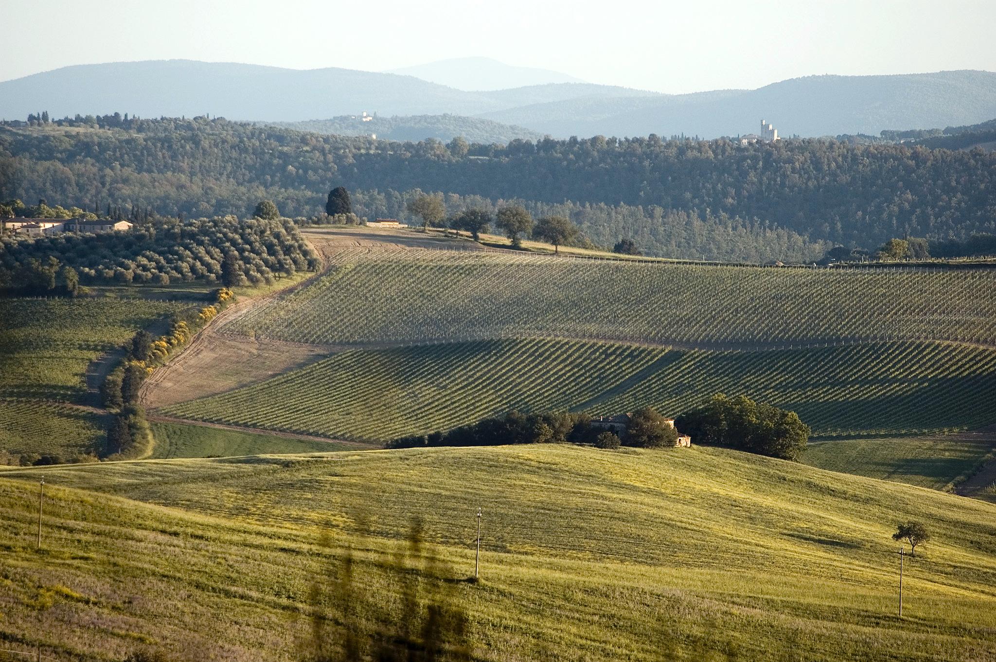 Toscana_maj06_109.jpg