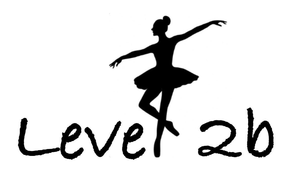 Level 2b Beginner ballet practice content.jpg